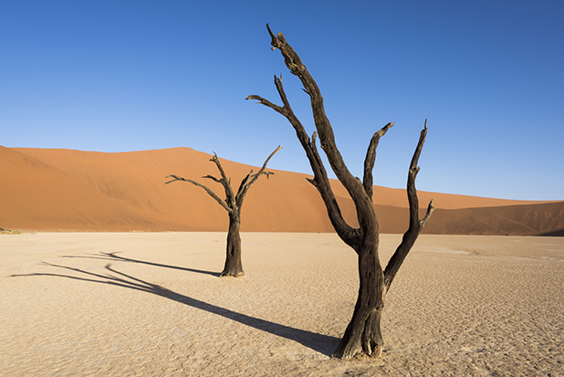 Landscape Photography in Namibia '